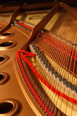 Interior of Grand Piano