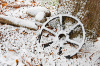 Winter's First Snowfall