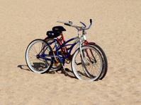 Beach Cruisers - His/Hers Bikes