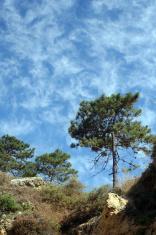 Strange Skyscape