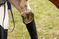 Rider examining horse shoe