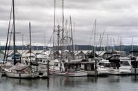Pacific Northwest Marina