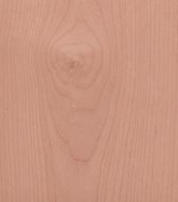 Alder Trunk Wood Texture Stock Photos Freeimages Com