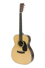 Steel-string Acoustic Guitar
