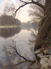 early morning at the river in tartu, estonia