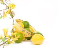 Lemon and Lime Border