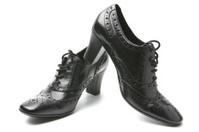 New Feminine Shoe