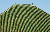 Green tile roof