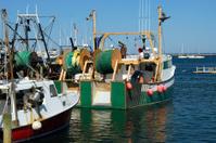 Deep Sea Fishers