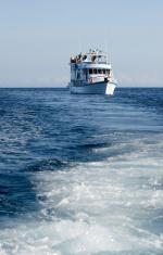 Galapagos cruise boat
