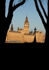 Big Ben through silhouette trees