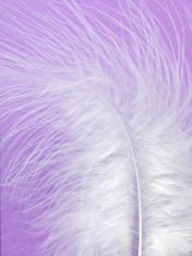 Softness of White