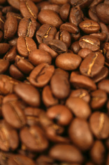Close up Coffee Beans Portrait