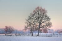 Soft winter colours