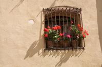 Italian window with geraniums.