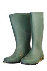 Green Wellington Boots