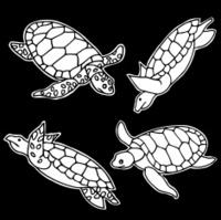 Line Art Freestyle Turtles