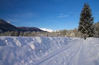 Lonely winter landscape