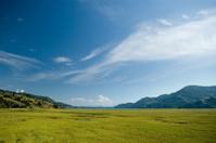 Pokhara Nepal Ricefields