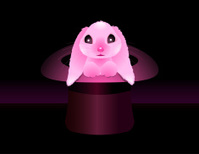 Magical Bunny