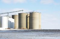 Concrete and Steel Grain Bins