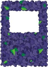 blueberry frame