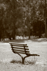 Lonely chair at the park