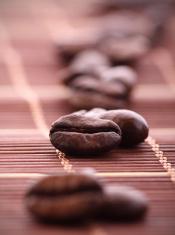Coffee bean macro shot