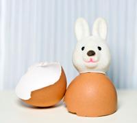 Sorta the Easter Bunny