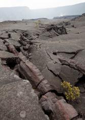 Lava Cracks