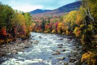 Fall foliage next to New England river