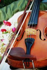 Wedding Melodies
