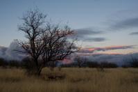 Desert Winter Sunset