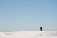 Lone rider in snowy landscape