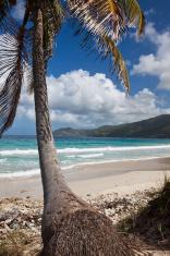 Beach Down South BVI Caribbean Sea Tortola