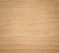 Holz Birke birke holz textur stockfotos freeimages com