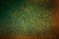 Greenish Leather Texture