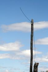 Old Telegraph Line