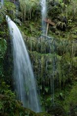 """Levada"" in Madeira island"