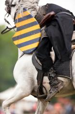 Injured Knight