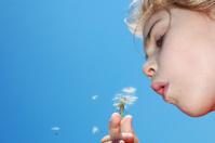 blowing away dandelion seeds