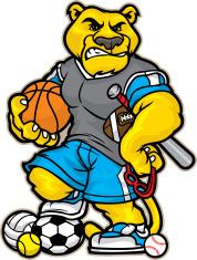 Allsport Cougar