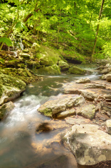 Creek in Ozark Mountains of Arkansas