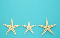 Starfish Souvenirs Series