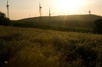 wind turbine soldiers