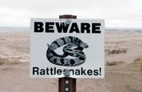 Rattle Snake Warning Sign