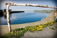 Ardrossan Harbour, Ayrshire, Scotland