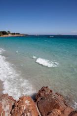 Corsica - Palombaggia Beach (XXL)