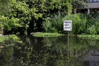 Sign danger deep water in backwater lake