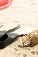 Flippers, snorkel mask and some shells